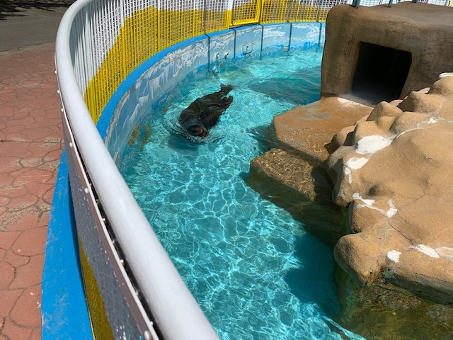 長野市城山動物園。