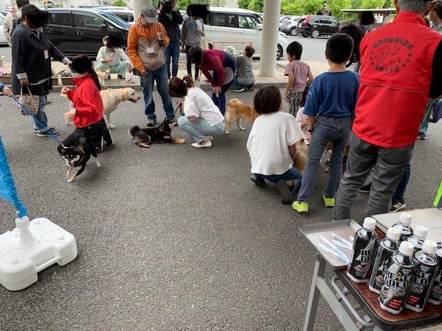 長野市保健所犬のしつけ方教室、6月15日。