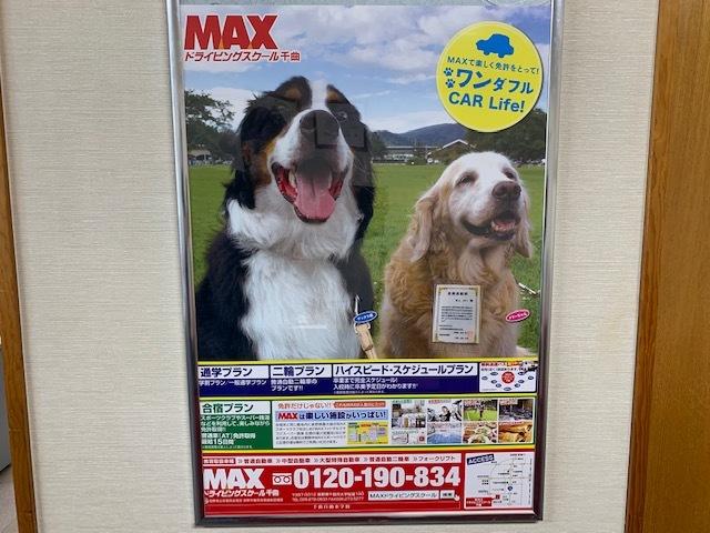 マックス&メリーのポスター。