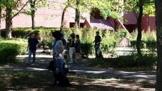 8月の犬のしつけ方教室、若里公園。