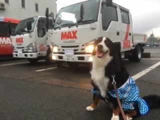 準中型新車、長野の合宿免許、マックス!