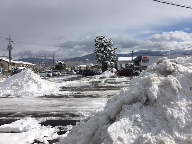 長野の合宿免許にも雪が降りました。