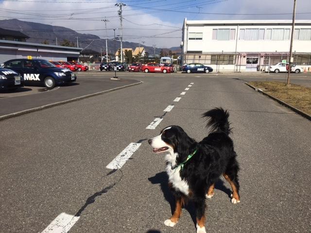 長野の合宿免許のお天気。