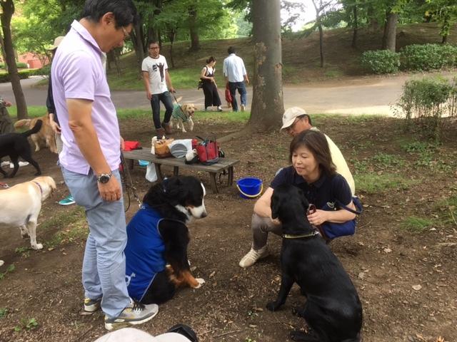 信州の合宿免許の看板犬、マックス。