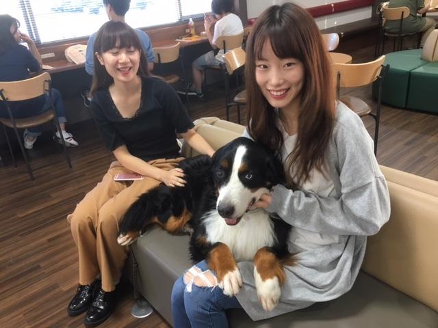 女の子と合宿免許の看板犬、マックス!