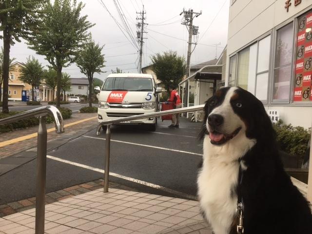 長野の合宿免許は格安、お得。