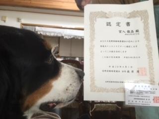 合宿免許だけじゃない、長野のMAXドライビングスクール千曲。