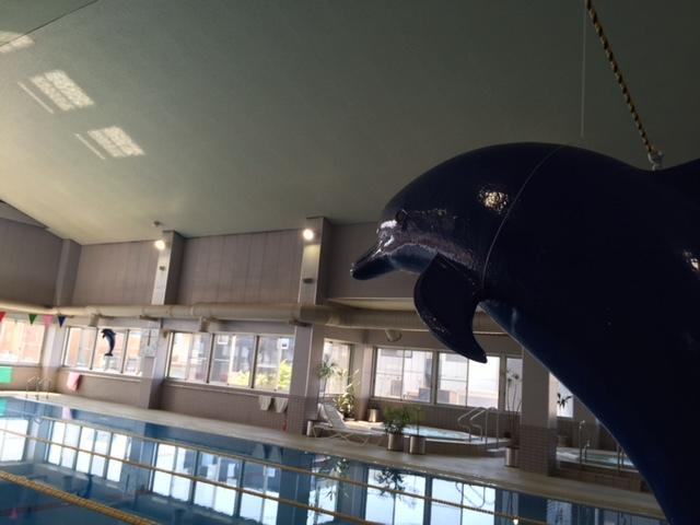 プール付き長野の合宿免許。