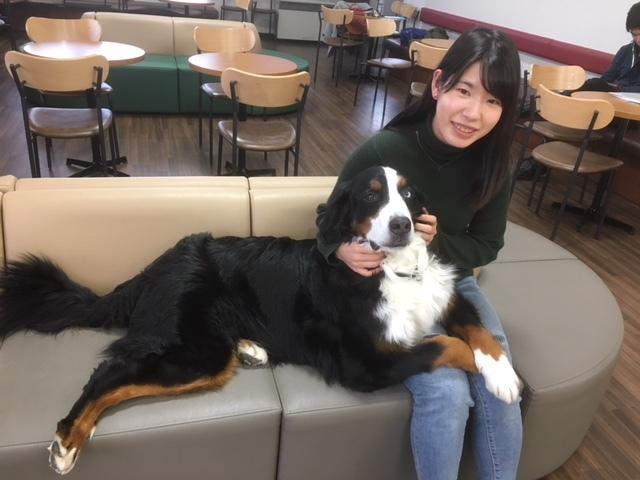 長野の合宿免許の看板犬と女の子。
