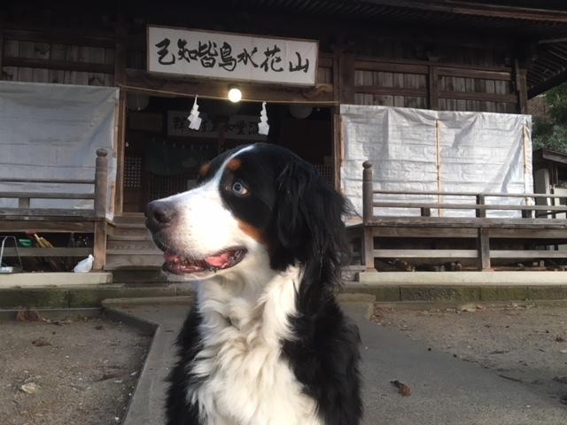 犀川神社へお参り。