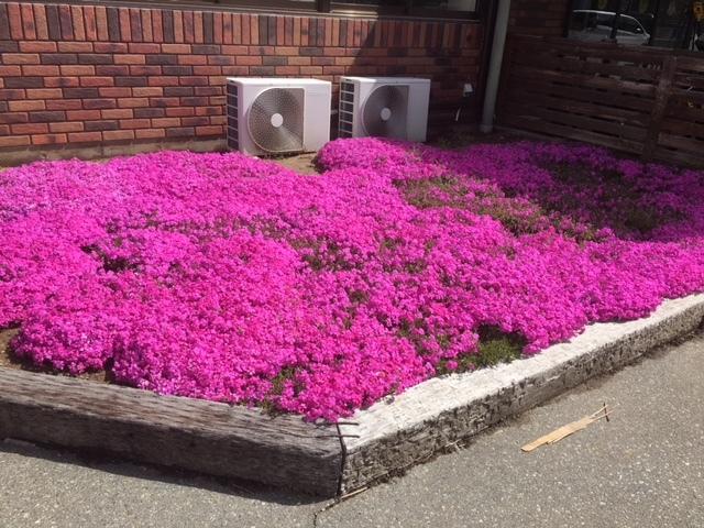 長野の合宿免許は花盛り。