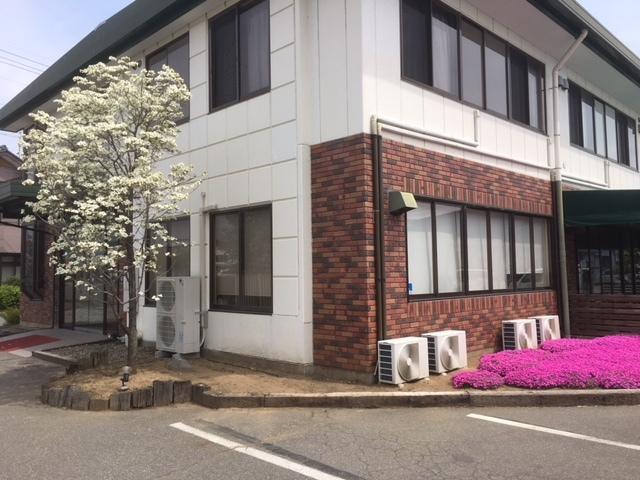 ハナミズキ、芝桜。