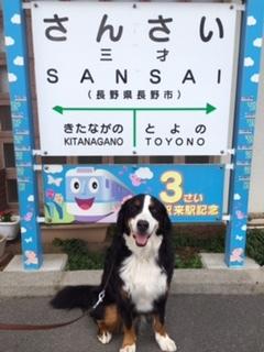 夏休みは涼しい長野で合宿免許。