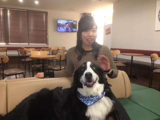 長野の合宿免許と犬が苦手な女の子。