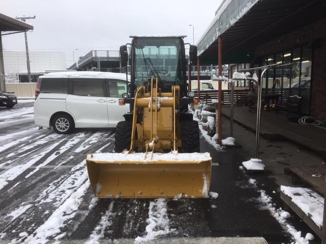 長野は雪なし。