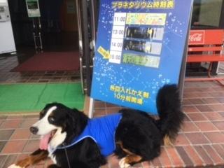 長野の合宿免許のお楽しみ。